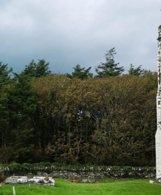 Rathbarry church & graveyard, Castlefreke, Cork