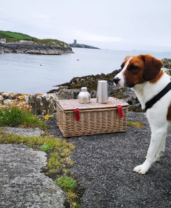 Mutti, Chief Play Officer in Ireland Chauffeur Travel