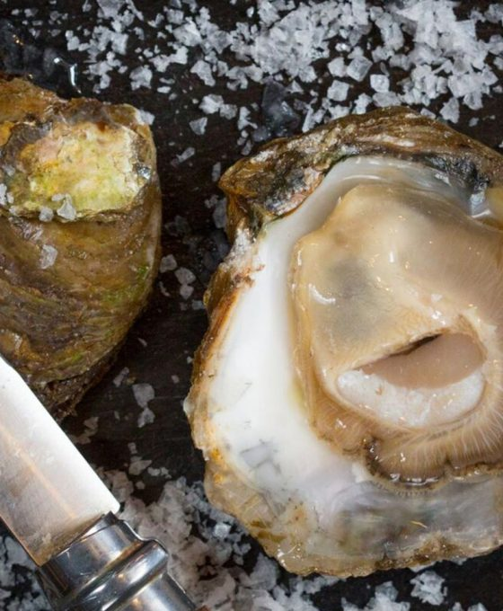 Oyster Season Begins in Ireland
