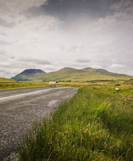 Private Ireland Tours - What to Expect | Ireland Chauffeur Travel9